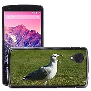 GoGoMobile Etui Housse Coque de Protection Cover Rigide pour // M00125158 Gaviota Naturaleza Pájaro Animal // LG Nexus 5