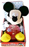 Disney Mickey Mouse Photo Water Globe Softie