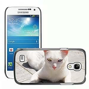 Hot Style Cell Phone PC Hard Case Cover // M00113019 Cat White Heterochromia Animal Pet // Samsung Galaxy S4 Mini i9190
