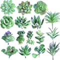 FEPITO 16 Pcs Random Size Artificial Succulent Plants Unpotted Succulents Picks Faux Succulent Plant in Green Stems for Home Indoor Garden Decoration