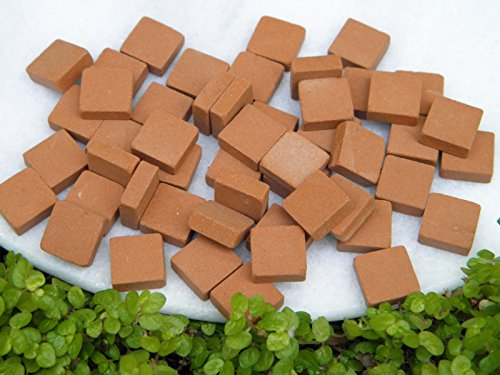 50 Brick (CHSGJY Miniature Dollhouse Fairy Garden Accessories ~ 50 Square Red Patio Bricks)