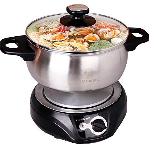 LIVEN Electric Hot Pot with 304 Stainless Steel Pot Body DHG-200F