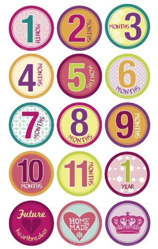 Belly Banter GIRL Onesie Stickers Includes 12 month stickers plus 3 BONUS statement stickers