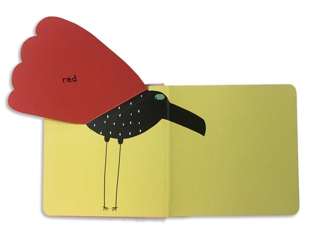 Surprising Birds: Lift-the-Flap Colours (Walker Studio) by Walker Books Ltd