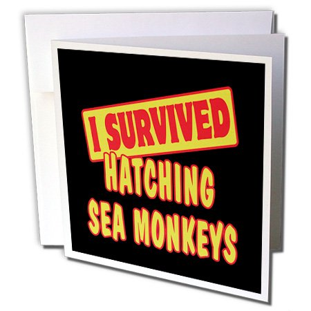 3dRose Dooni Designs Survive Sayings - I Survived Hatching Sea Monkeys Survial Pride And Humor Design - 1 Greeting Card with envelope (gc_117997_5)