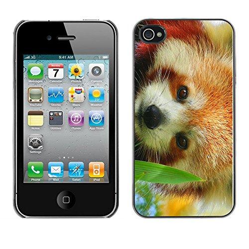 Omega Case PC Polycarbonate Cas Coque Drapeau - Apple iPhone 4 / 4S ( The Red Panda )