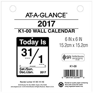 """AT-A-GLANCE Wall Calendar 2017, Today Is, Daily, 6 x 6"""" (K100)"""
