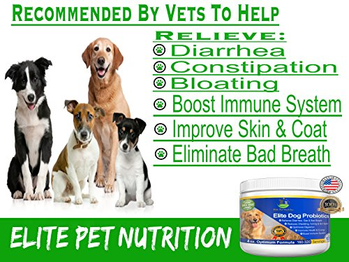 Cheapest Probiotic Supplement for Dogs Elite Dog Probiotics Powder by Elite Pet Nutrition Veterinarian Recommended Eliminates Diarrhea Gas All normal Non GMO Gluten Free FREE BONUS Made in the USA 8oz Check this out