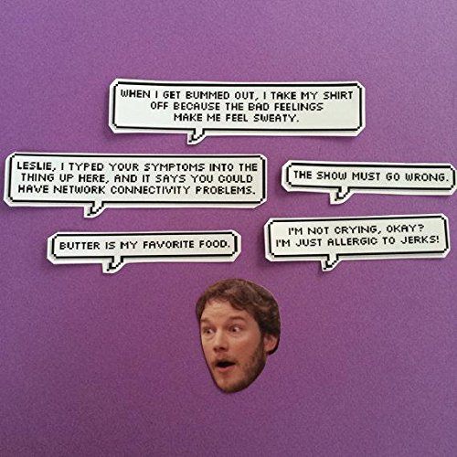 Amazon.com: Andy Dwyer Parks and Rec Quotes Sticker Set ...