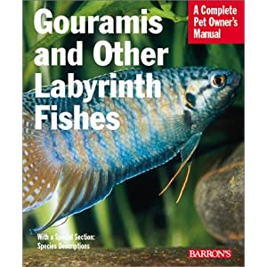 Gouramis and Other Labyrinth Fishes (Complete Pet Owner's Manual) 22