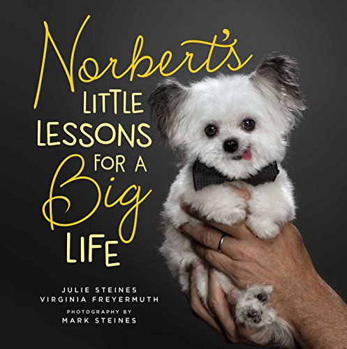 Norbert's Lilliputian Lessons for a Big Life