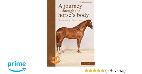A Journey Through The Horses Body The Anatomy Of The Horse Dr