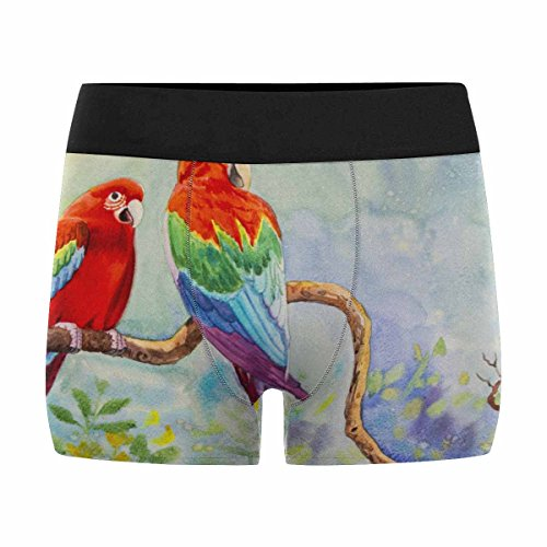 InterestPrint Men's Boxer Briefs Colorful of Macaw Bird Couple Bird on Branch XL by InterestPrint