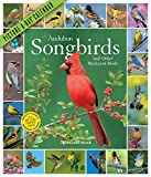 Books : Audubon Songbirds and Other Backyard Birds Picture-A-Day Wall Calendar 2020