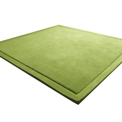 Amazon.com: Lqjsdfjegd Area Rugs Carpet Coral Velvet Carpet ...