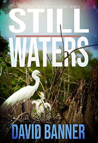 Still Waters: A Lowcountry Seaside Mystery (Lowcountry Mystery Series Book 4)