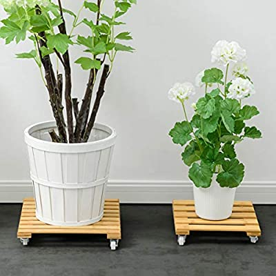LRW Movable Type Flower Stand Flower Pot Base Moving Pulley Wooden Indoor Living Room Flower Stand (Size : L): Garden & Outdoor
