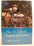 The Sulidae, J. Bryan Nelson, 0197141048