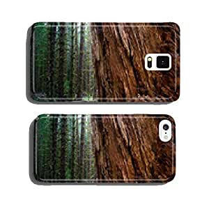 Massive Old Growth Red Cedar Tree Split Apart Wooded Rainforest cell phone cover case iPhone5