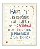 The Kids Room by Stupell Textual Art Wall Plaque, A Noise With Dirt On It, 11 x 0.5 x 15, Proudly Made in USA