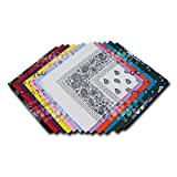 Kaiser Collection Double Sided Paisley Bandanas (1 Dozen), Assorted
