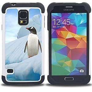 /Skull Market/ - Horse Cute For Samsung Galaxy S5 I9600 G9009 G9008V - 3in1 h????brido prueba de choques de impacto resistente goma Combo pesada cubierta de la caja protec -