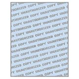 8-1/2'' x 11'' Standard Blue Multi-Purpose Security Paper, 2 Security Features, 24# Blue Stock (Carton of 2500)