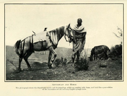 1910 Print Ethiopia Abyssinian Horse Saddle Abyssinia Equestrian Historic Image - Original Halftone Print