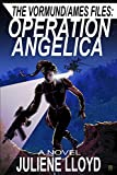 Bargain eBook - Operation Angelica
