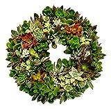 Fat Plants San Diego Living Succulent Wreath (Large)