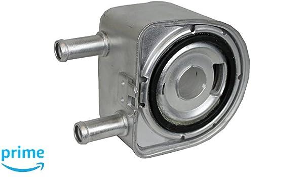 BEHR HELLA SERVICE 8MO 376 783-791 Radiador de aceite, aceite motor: Amazon.es: Coche y moto