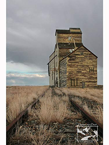 Prairie Grain Elevator - Prairie Photography, Abandoned Photography, Abandoned, Rustic, Rural, Farm, Home Décor, Wall Art