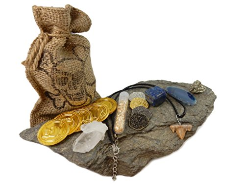 Pirate Treasure Pouch Set 17 Pcs Collection - 10 Assorted Pirate Coins, Shark Tooth Necklace, Pyrite Stone, Gold Flake Filled Vial, Blue Agate Slice, Crystal Quartz Point, Tumbled Lapis with COA (Mini Pirate Skull Figurine)