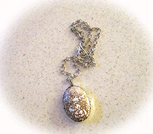 Sterling Silver Necklace Features An Ocean Jasper Pendant