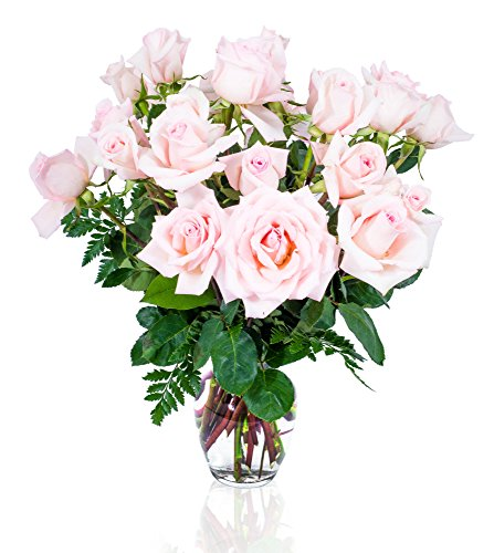 (FLWERZ [Touch of Elegance] Two Dozen Classic Aromatic Beautiful Blooming Pink Roses Gorgeous Long Stem Fresh-Cut Hand-Made Luxury Bouquet Arrangement of Rose Flowers w/Free clear 8 oz Vase)