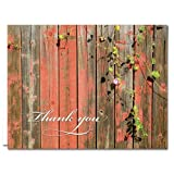 A Sunny Thank You - 36 Thank You Note Cards for $16.99 - Blank Cards - Tan Envelopes Included