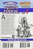 Knights of the Zodiac (Saint Seiya), Vol. 4