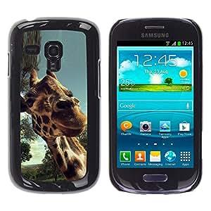 Caucho caso de Shell duro de la cubierta de accesorios de protección BY RAYDREAMMM - Samsung Galaxy S3 MINI 8190 - Lindo Girrafe primer plano