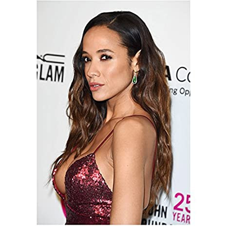 Dania Ramirez husband