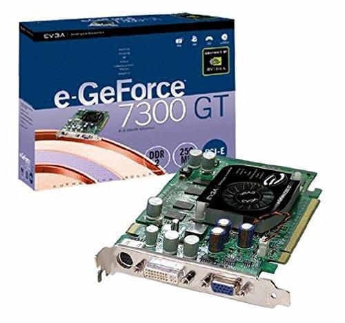 evga 256 P2 N445 EVGA nVidia GeForce 7300GT 256MB Overclock DVI/HDTV PCI-Express Video