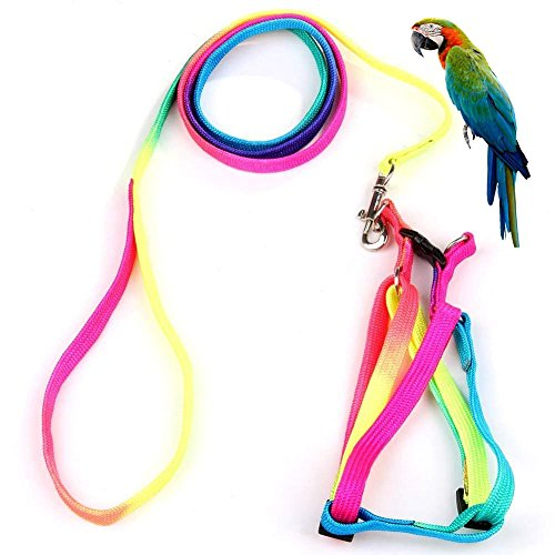 Pet Bird Harness and Leash with Buckle Adorable Rainbow Design Safe Parrot Leash Pet Harness Outdoor Adjustable Anti Bite Training Rope for Macaw Large Size Bird (1.5cm × 47.24in)]()