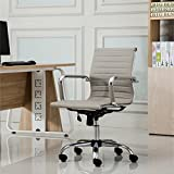 Roundhill Furniture Panoton Chromel Contemporary Low Back Office Chair, Taupe