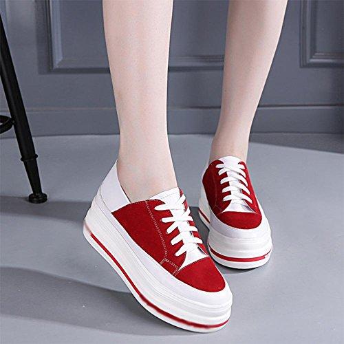 Ms. primavera e autunno scarpe casual, scarpe sportive scarpe ascensore focaccina pizzo fondo pesante scarpe , US8 / EU39 / UK6 / CN39