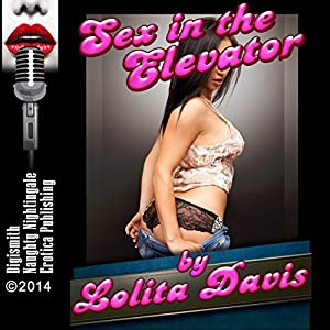 Sex in the Elevator Audiobook
