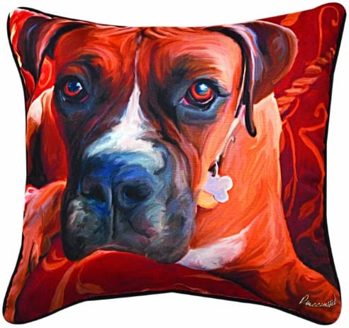 Manual Harry Boxer Paws and Whiskers Decorative Square Pillow, 18-Inch