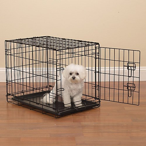 ProSelect Easy Dog
