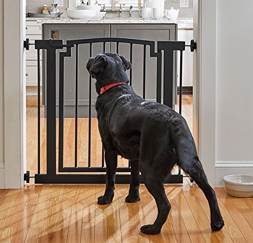 Orvis Wrought-iron Door-frame Gate / Doorway, Black, Small by Orvis