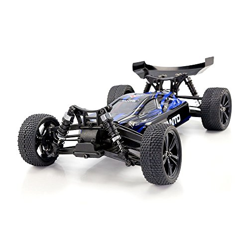 HIMOTO E10XBL RC Brushless Racing Car 1/10 Scale 2.4G 4WD Electric Power Off Road Buggy Car with 60 km/h+ High Speed, Blue