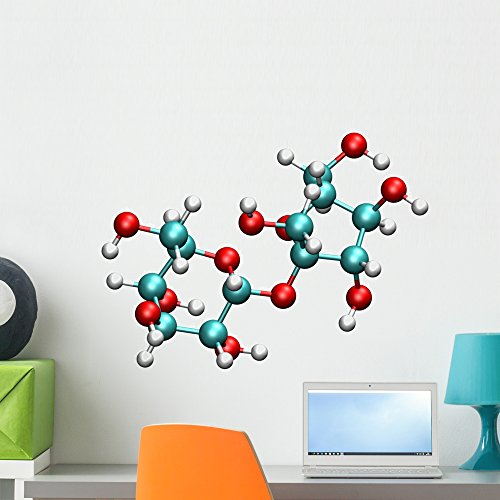 Wallmonkeys Sucrose Molecule Wall Decal Peel and Stick Business Graphics (24 in W x 18 in H) WM426395 by Wallmonkeys