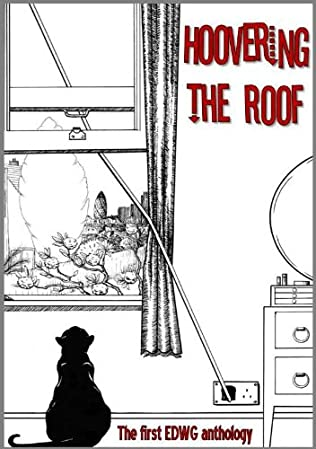 book cover of Hoovering the Roof